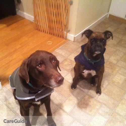 Pet Care Provider LaTisha G's Profile Picture