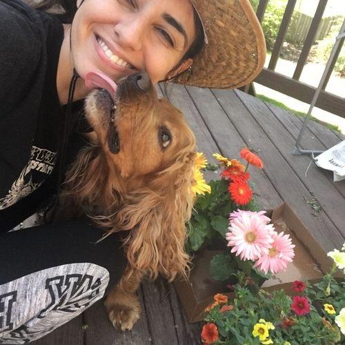 Pet Care Provider Gulsah T's Profile Picture