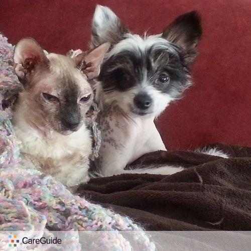 Pet Care Provider Kim Moumblow's Profile Picture