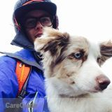 Canmore/ Banff pet care