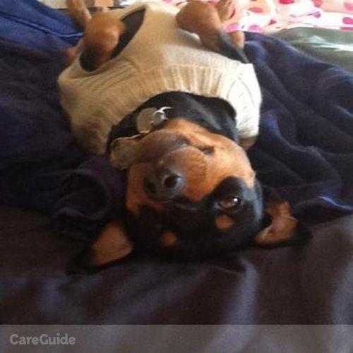 Pet Care Provider Tasia S's Profile Picture