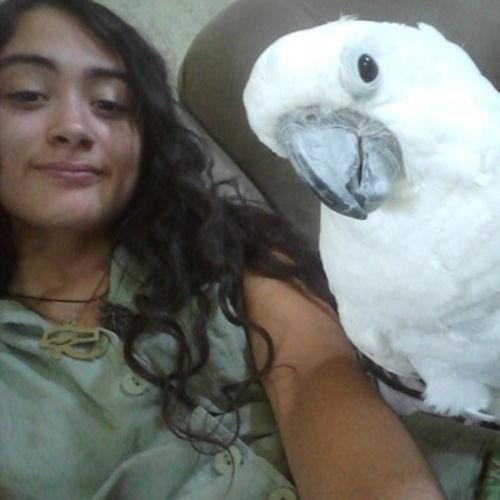 Pet Care Provider Samantha P's Profile Picture