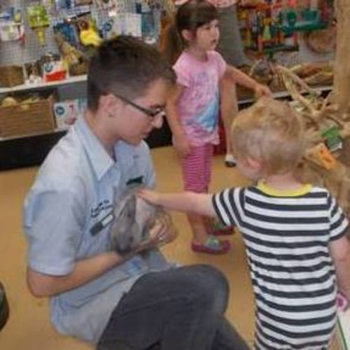 Pet Care Provider Matthew Staton Gallery Image 3