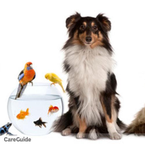 Pet Care Provider Brandon W's Profile Picture