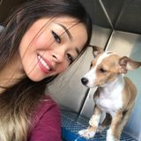 Sugar Land, Texas Pet Sitter. Energetic + Extra love and care!