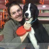 Dog Walker, Pet Sitter in West York