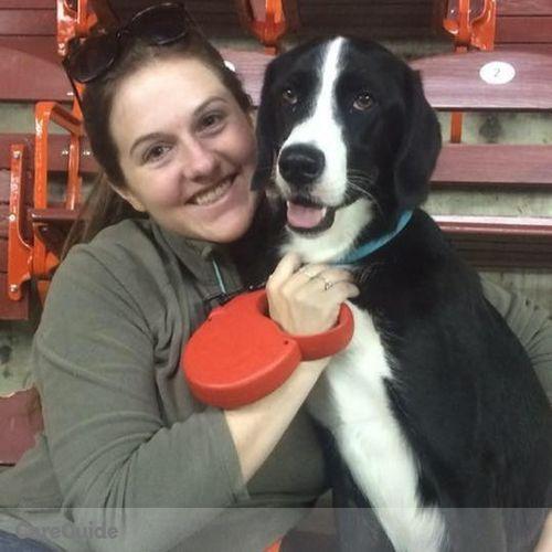 Pet Care Provider Lindsay Kohr's Profile Picture