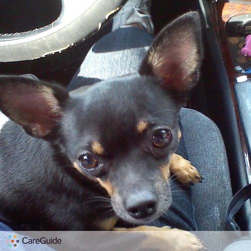 Pet Care Provider Michelle L's Profile Picture
