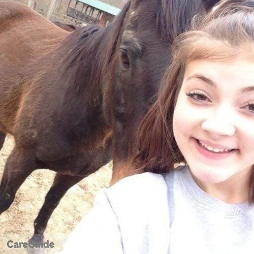 Pet Care Provider Samantha Davis's Profile Picture