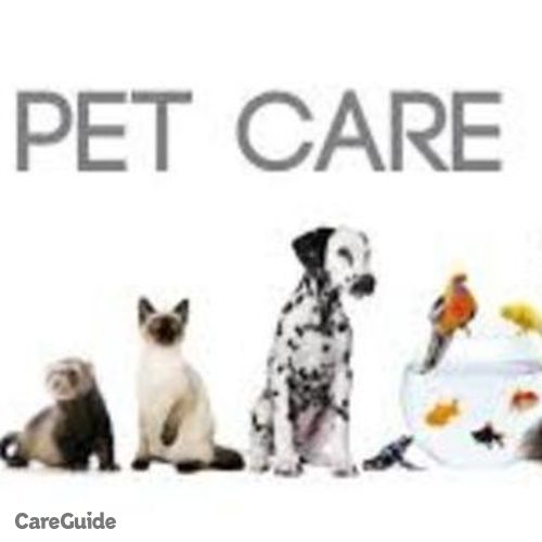 Pet Care Provider Angelica Ray's Profile Picture