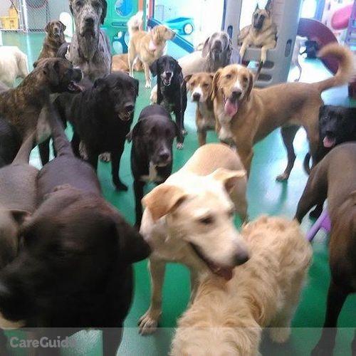 Pet Care Job Bark Avenue Pethouse's Profile Picture