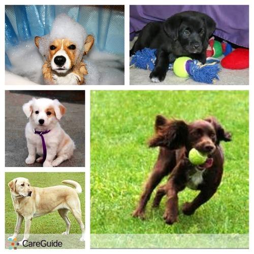 Pet Care Provider Chappianne Gavin's Profile Picture