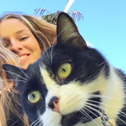 Costa Mesa Pet Sitter Seeking Work