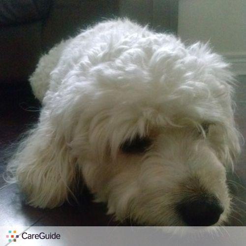 Pet Care Provider Danielle Sabio's Profile Picture
