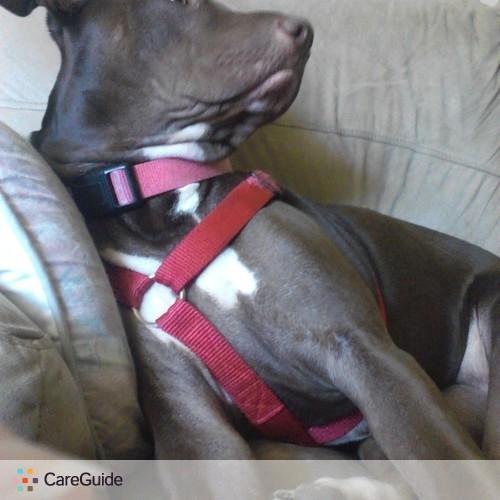 Pet Care Provider Kristen Robinson's Profile Picture
