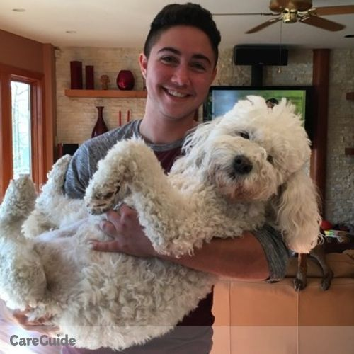Pet Care Provider Aiden Cohen's Profile Picture