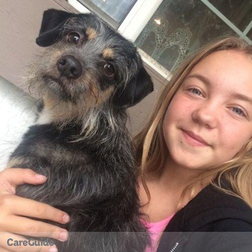Pet Care Provider Brittany T's Profile Picture