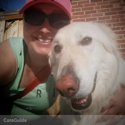 Pet Care Provider Lily the Dog Walker's Profile Picture