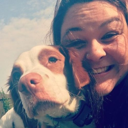 Pet Care Provider Megan Reppert's Profile Picture