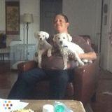 Dog Walker, Pet Sitter in Phoenix