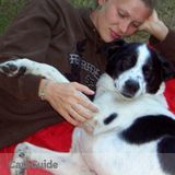 Loving and caring Pet Sitter available : )
