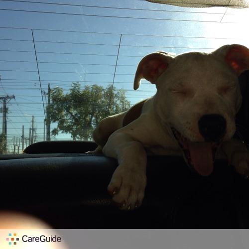 Pet Care Provider Ashley Ricardo's Profile Picture