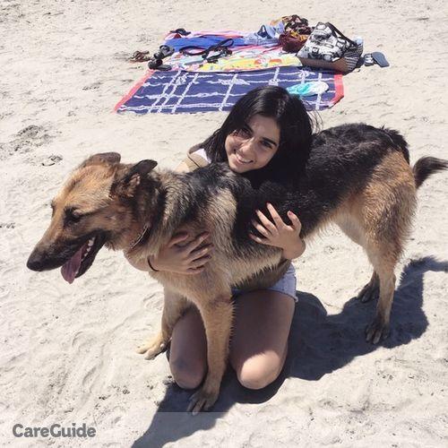 Pet Care Provider Vee S's Profile Picture