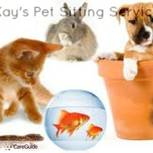 Pet Care Provider Kay Whitaker's Profile Picture