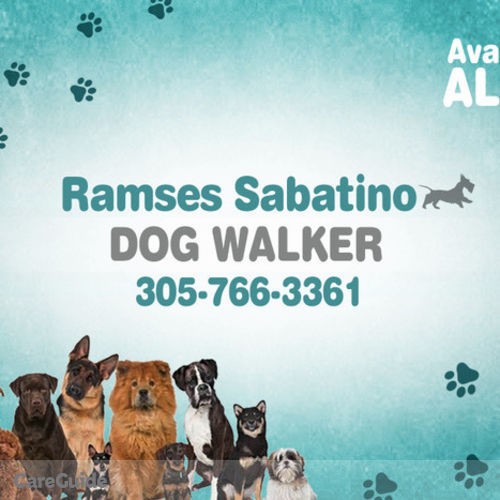 Pet Care Provider Ramsés Sabatino's Profile Picture
