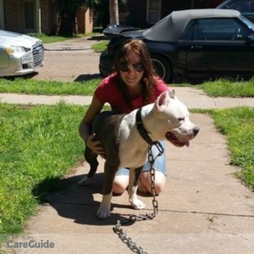 Pet Care Provider Kinga Antal's Profile Picture