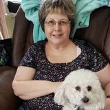 Capable Pet Sitter in Harrisburg. Capable cat and small animal sitter. I can watch dogs that only require short walks.