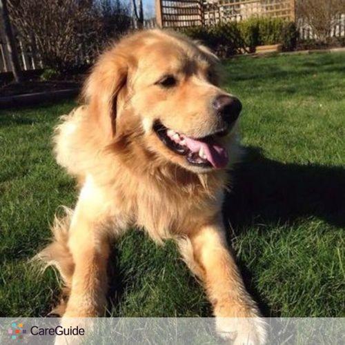 Pet Care Provider Happy Puppy Home Ltd's Profile Picture