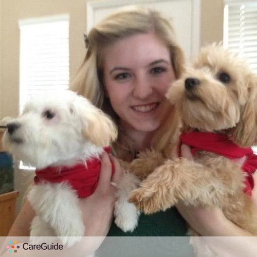 Pet Care Provider Marissa P's Profile Picture
