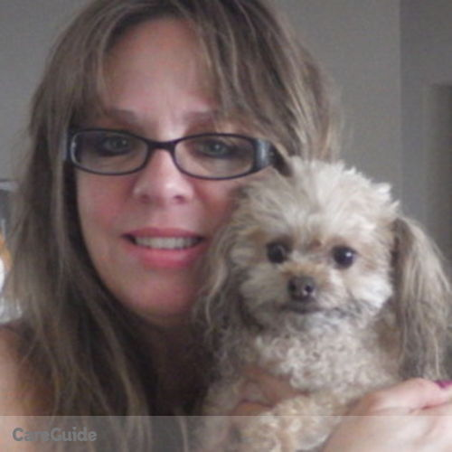 Pet Care Provider Andrea Flynn's Profile Picture