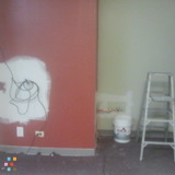 Painter in Orland Park