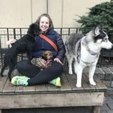 Dog Walker, Pet Sitter in Brooklyn