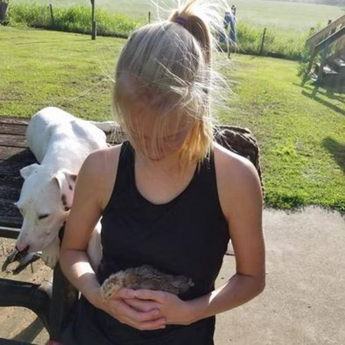 Pet Care Provider Caille B's Profile Picture