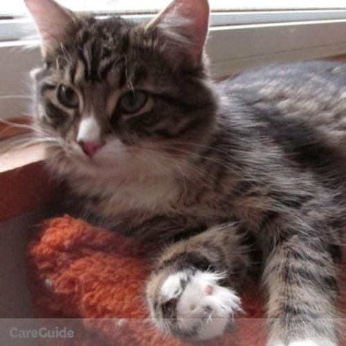 Pet Care Job Patricia Bradbury's Profile Picture