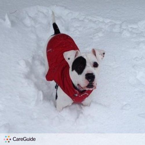 Pet Care Job Meghan Esslinger's Profile Picture