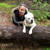 Dog Walker, Pet Sitter in Spring Lake