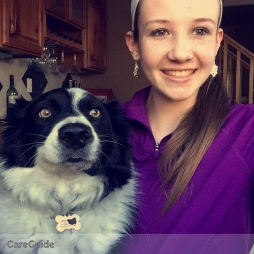Pet Care Provider Allison D's Profile Picture