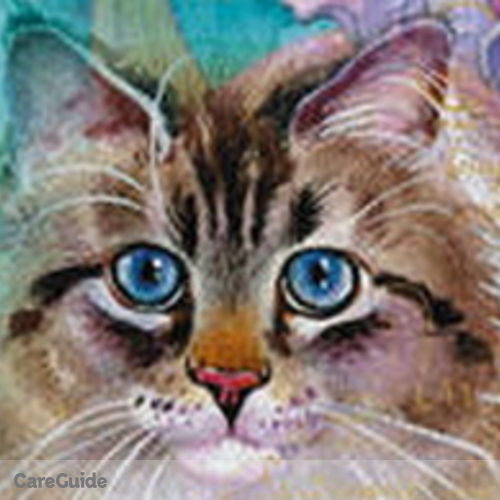 Pet Care Provider All About Kitties - Professional Cat Sitter's Profile Picture