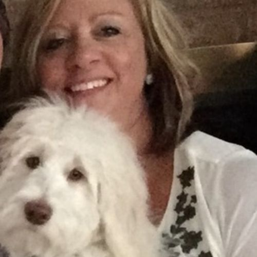 Pet Care Provider Dawn T's Profile Picture
