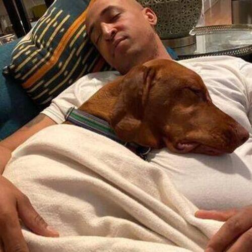 Pet Care Provider Kyle M's Profile Picture
