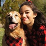 Seeking Jobs in Henderson for Pet Care including Dog Walking, Feeding, and Pet Sitting.