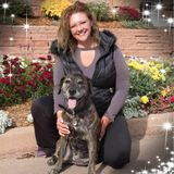 Are you looking for an experiences animal care giver and lover?