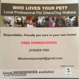 Dog Walker, Pet Sitter in Bellmore