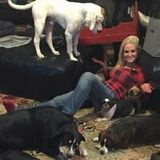For Hire: Talented Dog Sitter located in Chippewa Falls Wisconsin Email Address is