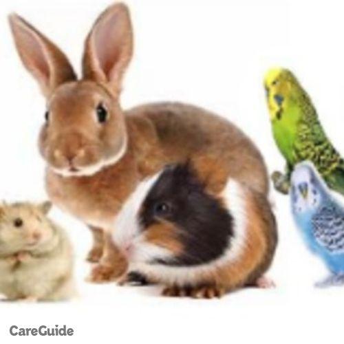 Pet Care Provider Sania A's Profile Picture