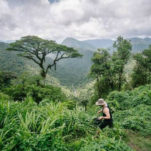Videographer Provider Erik Blume's Profile Picture